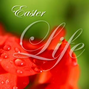 Easter - Life